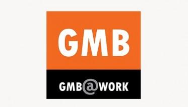 gmb-banner-788x3071111
