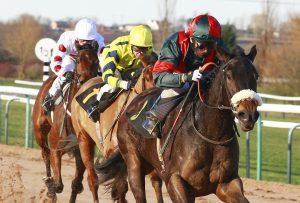 southwell-racecourse-lead